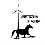 Logo Wietrzna Stajnia